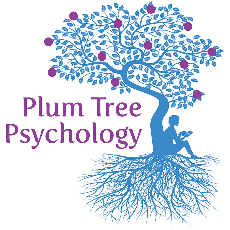 About Educational Psychologists